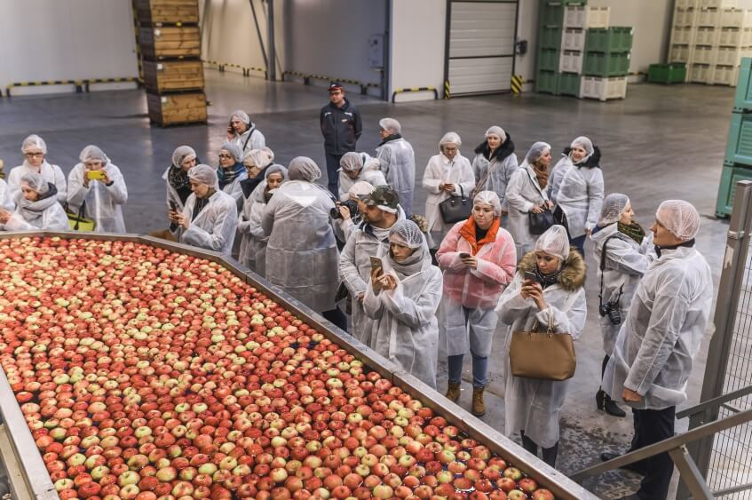 DziękujęByło Pyszne jabłka grójeckie